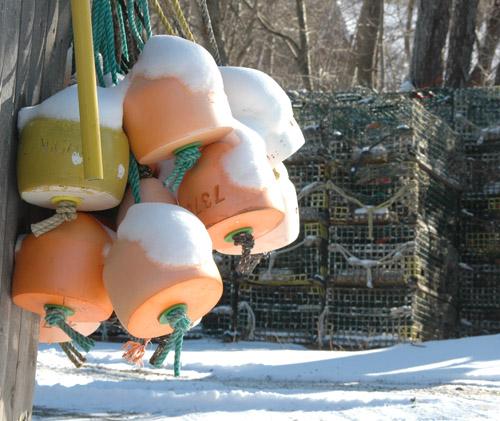 buoys1