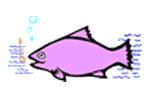 fish-3