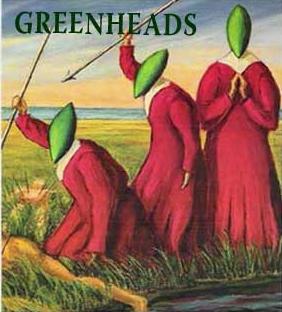 greenheads-photo