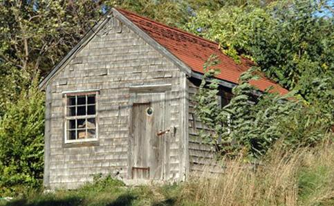 lanes-cove-shack