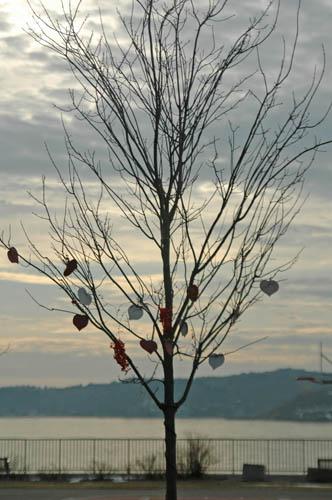 valentine-tree1