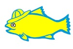 yellow-fish
