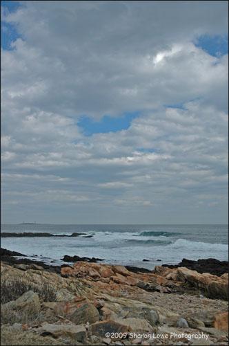 back-shore1