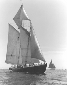 From the Schooner Adventure website