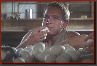 cool_hand_luke_50_eggs