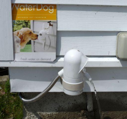 Review: Furbo Automatic Treat Dispensing Dog Camera