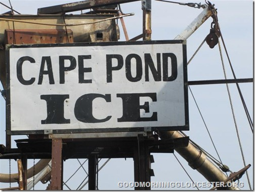 Cape Pond Ice 007