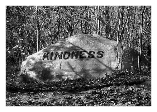 Babson Boulder Kindness