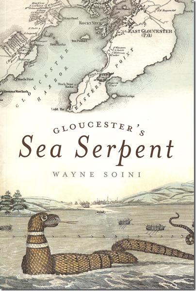 Soini Book Cover