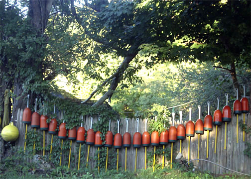 photo of row of buoys on a fence forming an orange toothed smile