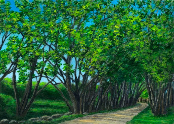 Painting of the Willows of Annisquam aka Willows at Riverdale and Annisquam Willows