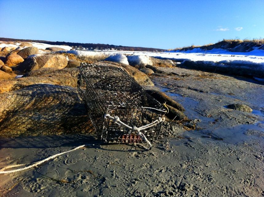 Washed Ashore | GoodMorningGloucester