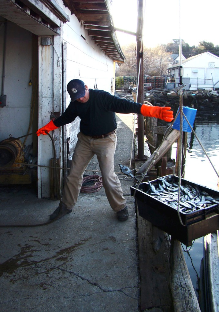 Joey C. (Ciaramitaro) working on the dock at Captain Joe & Sons