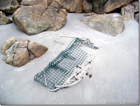 lobster pot in the sand
