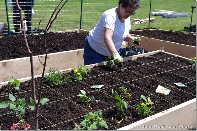 Burnham's Field garden - Paula Shevenell