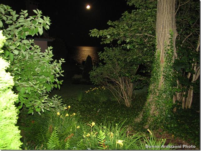 July 15, 2011 Moon 077