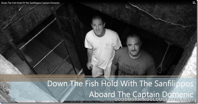 captaindomenicfishhold