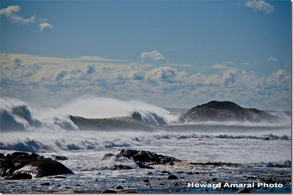 Brace's Cove