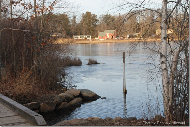 Calming Clarks' Pond