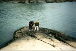 Gloucester's little creatures in rocks we photograph [with my son Kevin] Yr. 2000