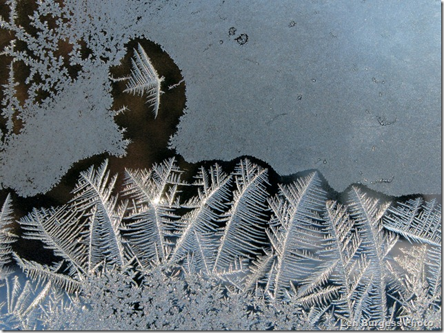 IceCrystals _8177