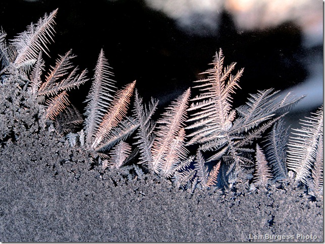 IceCrystals2_1203