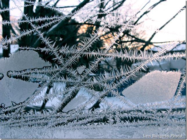 IceCrystalsSunrise_1225