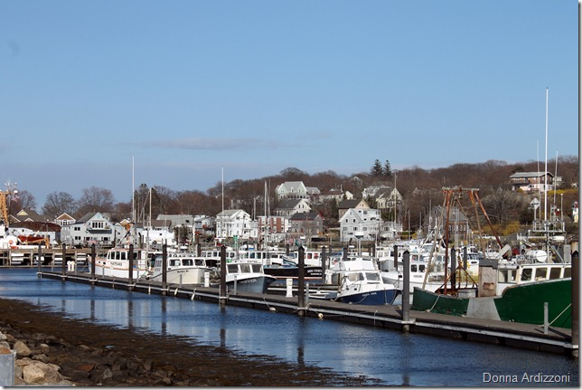 March 26, 2012 low tide from the state pier