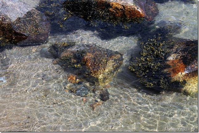 April 13, 2012 low tide at Half Moon Beach