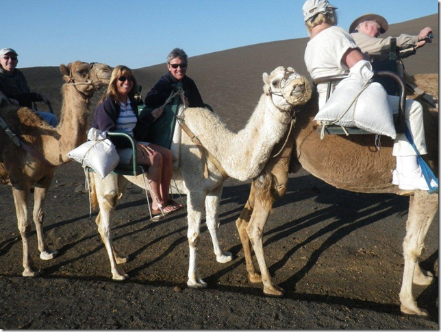 Cruise 2012 Camel Ride in Lazarote Canary Islands