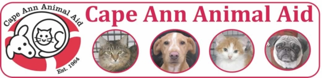 cape ann animal aid