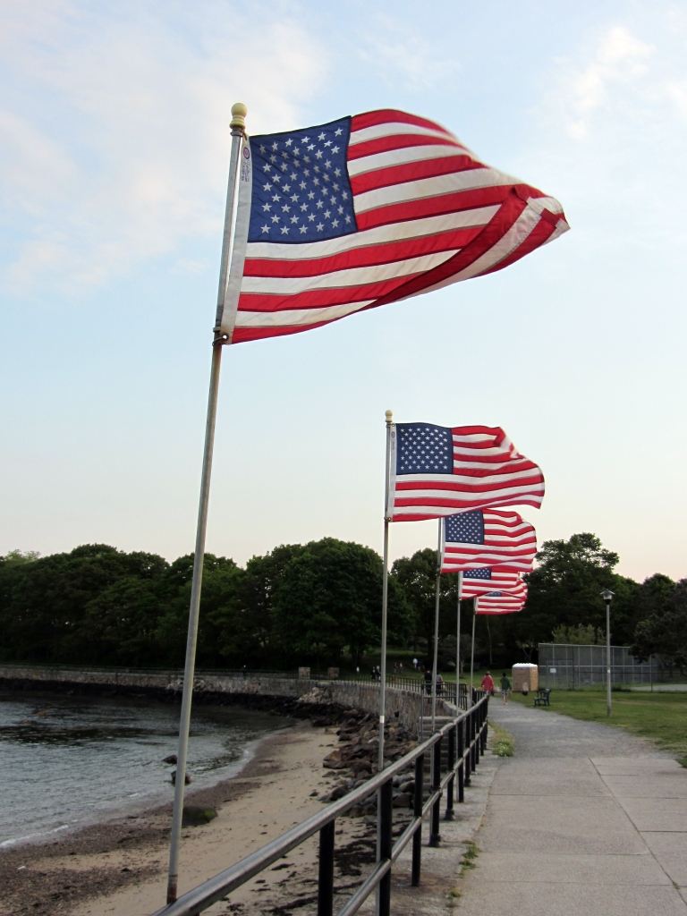 American Flags on  Stacey Blvd