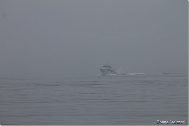 may 4, 2012 yankee freedom in the fog_edited-2