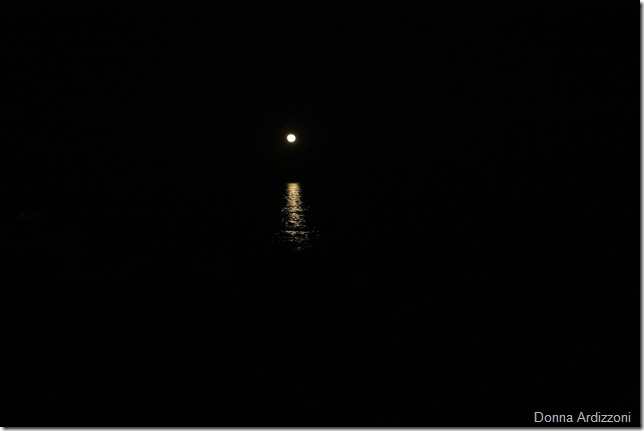 May 6, 2012 moona beacon in the darkness