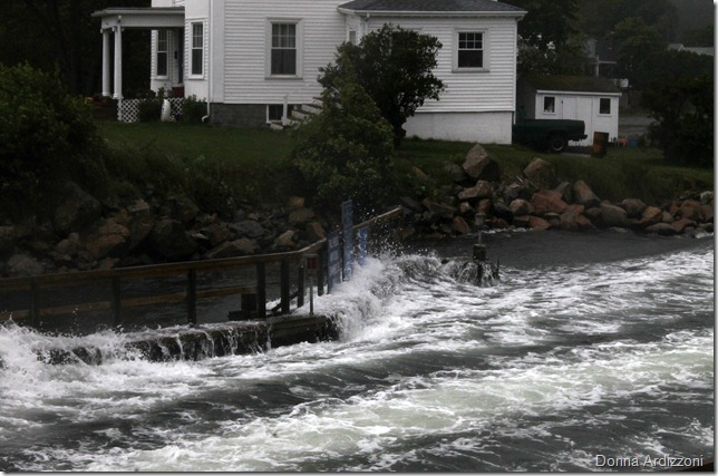 June 3, 2012 High Tide on a misty day