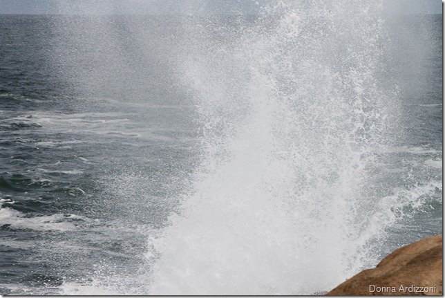 June 5, 2012 spray on the back shore