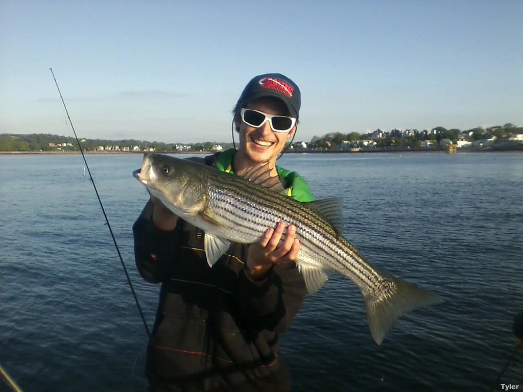 New feature tyler from yankee fleet s gloucester ma for Ma fishing report