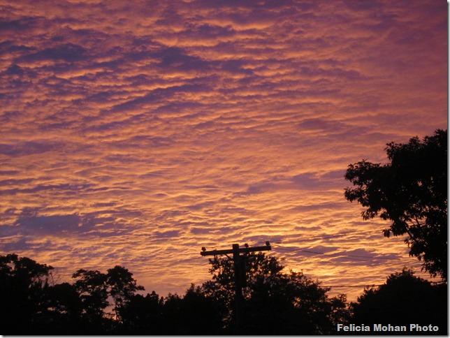 morning sunrise 001
