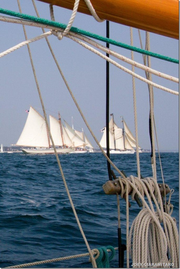 American Eagle and Alabama from Green Dragon 2011