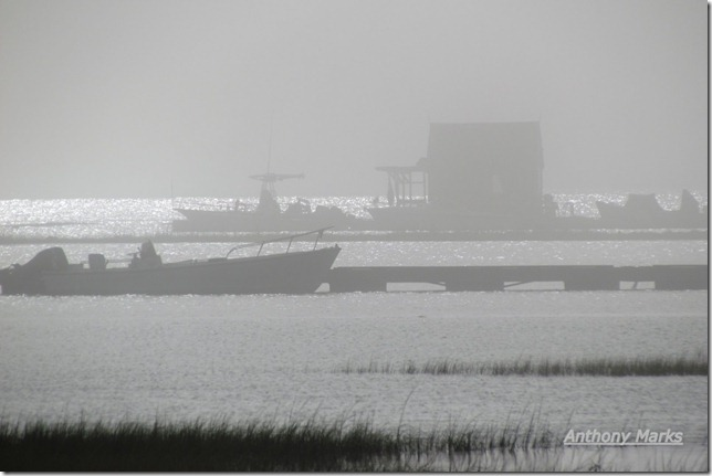 Houseboat in the fog