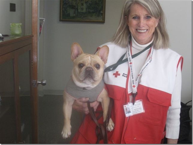 Deborah Gilbert with Therapy Dog Ivy