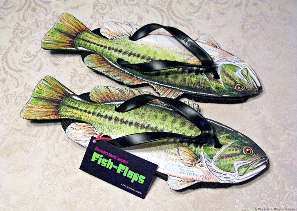 Fish flops yep that s right fish flops from len burgess for Fish flip flops