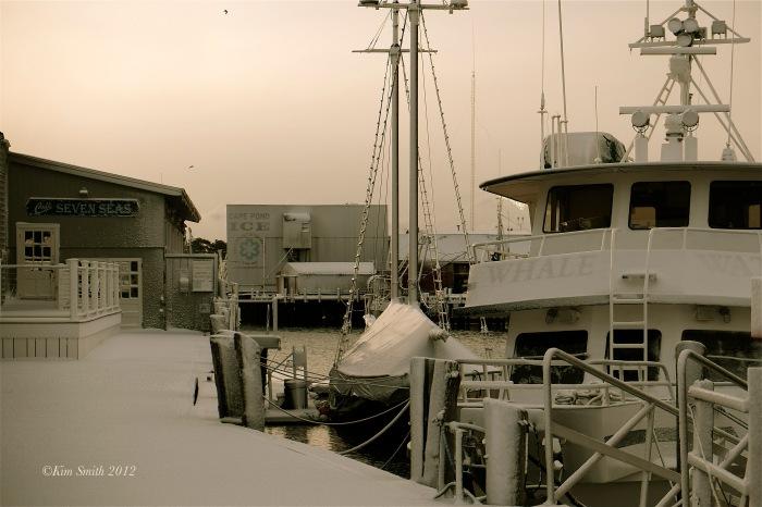 Harbor Walk Dawn Winter -8©Kim Smith 2012