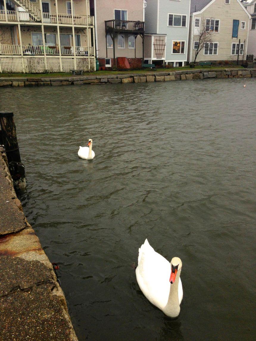 Rockport Harbor High Tide 12/27/12