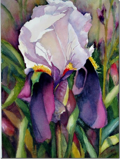 Iris_by_Nancy_Caplan