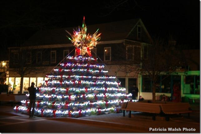 P-town tree