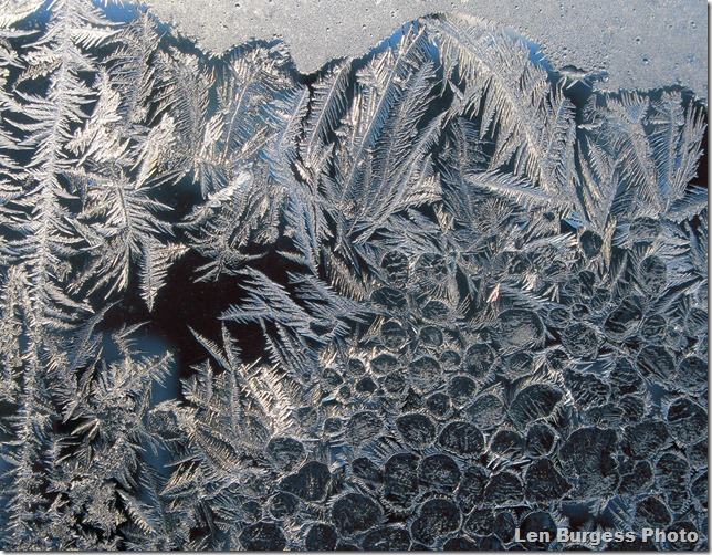 IceCrystal12-31-'12_4880