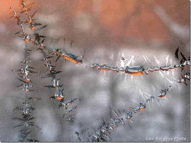 IceCrystal12-31-'12_4947