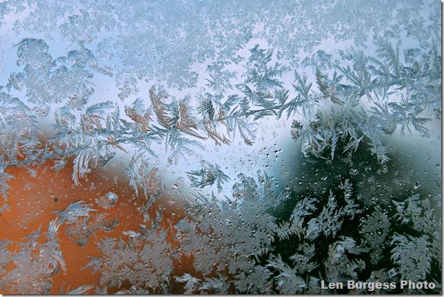 IceCrystal12-31-'12_5074