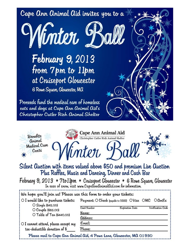 WinterBall2013_Invitation
